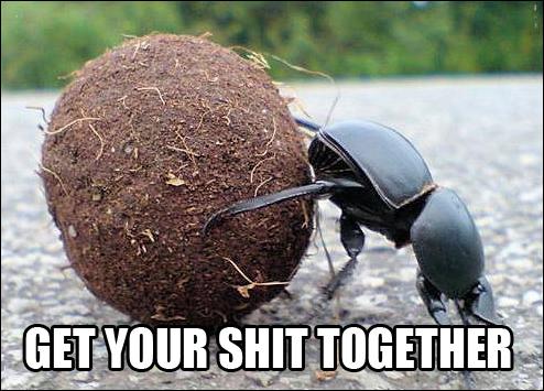 Image result for get your shit together meme