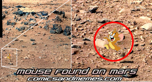 mouse found on mars meme