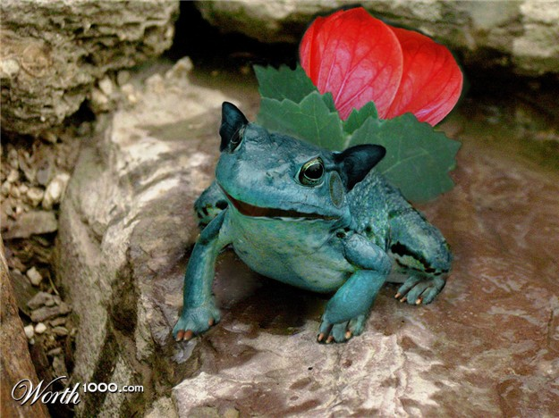 002 real life like pokemon ivysaur