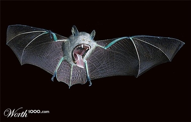 042 real life like pokemon Golbat