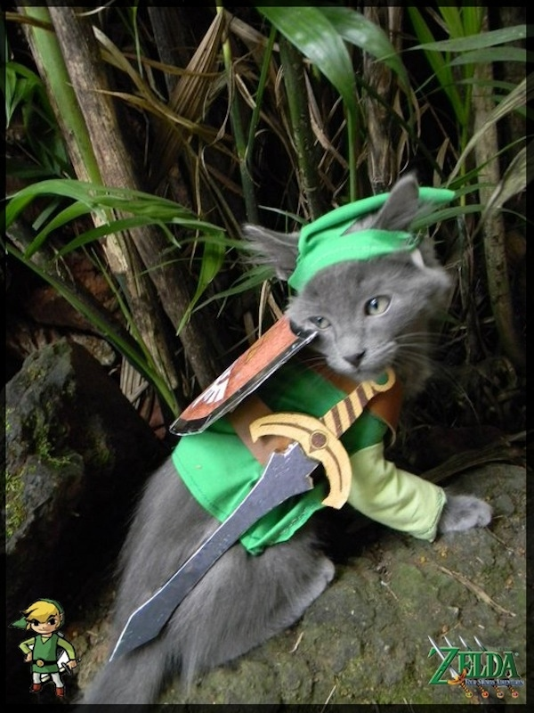 zelda link cat pet costume & zelda link cat pet costume u2013 Comics And Memes
