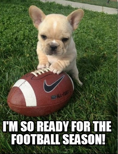 football meme 001 dog ready for season