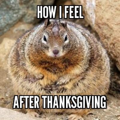 thanksgiving meme 001 how i feel after thanksgiving