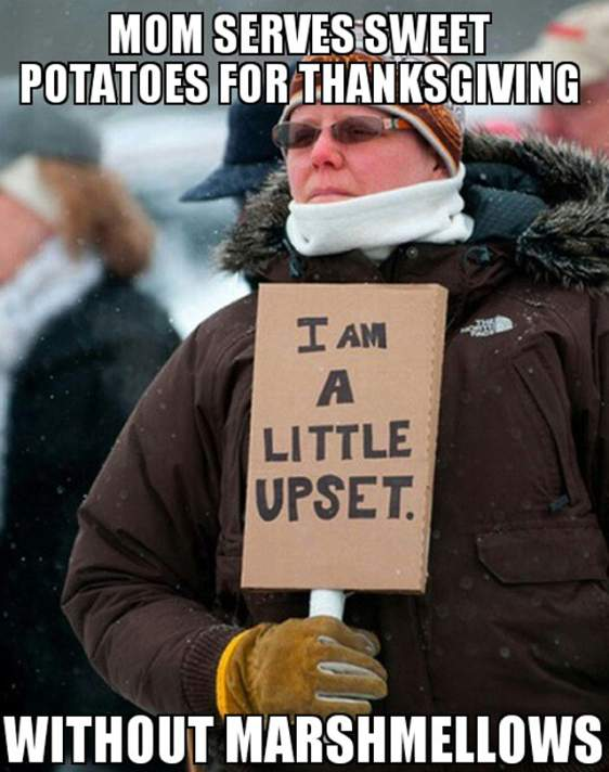 thanksgiving meme 002 sweet potatoes no marshmellows