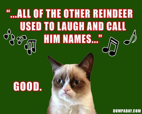 Christmas Memes Cats.Grumpy Cat Christmas Memes Comics And Memes