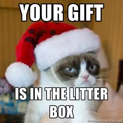 grumpy cat christmas meme 004 in the litter box