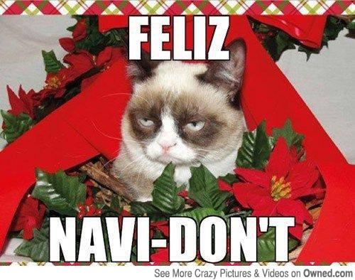 Funny Grumpy Cat Christmas Memes.Grumpy Cat Christmas Meme 011 Feliz Navi Dont Comics And Memes