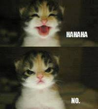 comment reply 010 haha no comment meme
