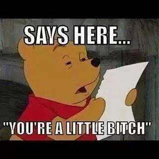 comment reply 017 pooh says here your a lil