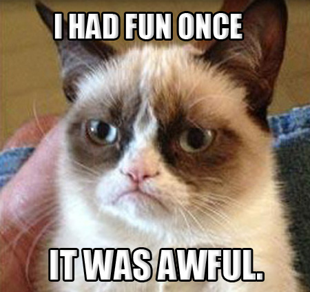 [Image: grumpy-cat-003-had-fun-once.jpg]