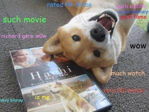 shibe doge meme 002 moiv shebe wow 300x225 shibe dog memes wow comics and memes