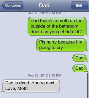 text message meme 029 moth in the bathroom - Comics And Memes